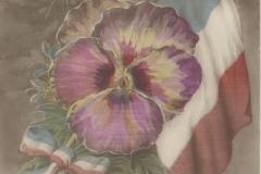 1916-09-09_001